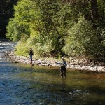 We passed many fly fisherman.