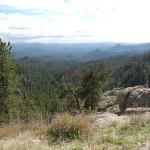 View on Needles Highway.