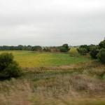 Eastern South Dakota landscape