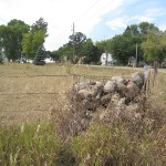 Corner fence posts of rock in northern Benton Cty, MN