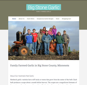 Screenshot of bigstonegarlic.com home page