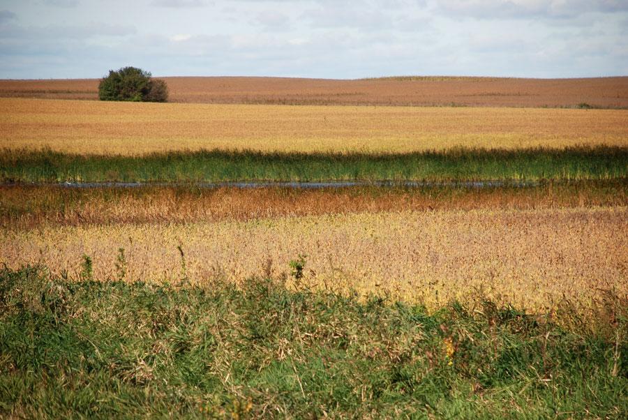 autumn on the prairie