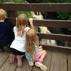 Pattison waterfall